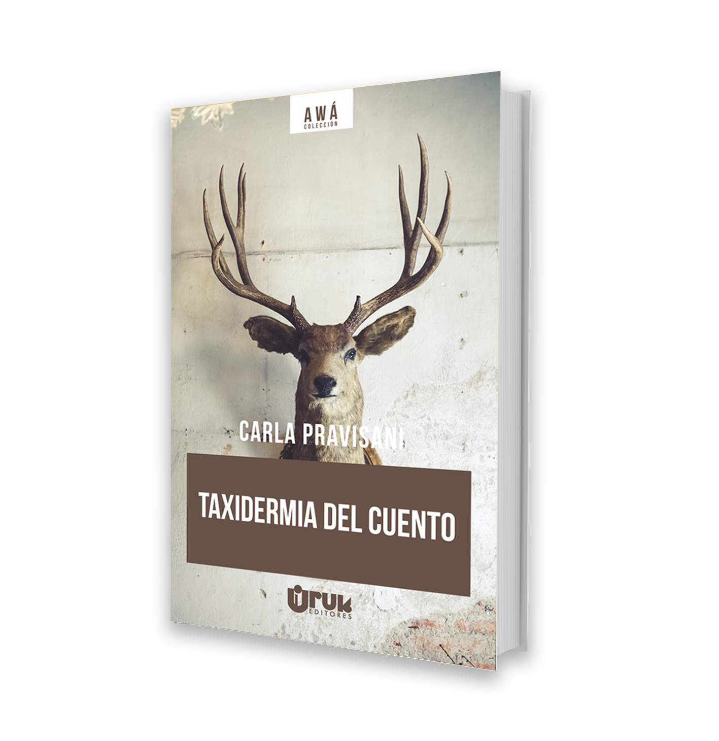Taxidermia del cuento